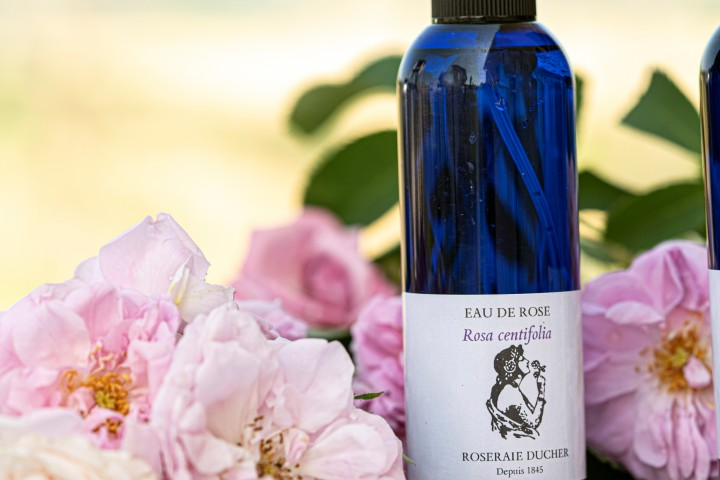 Hydrolat Rose Centifolia (Rose de Mai) - Eau de Rose Centifolia