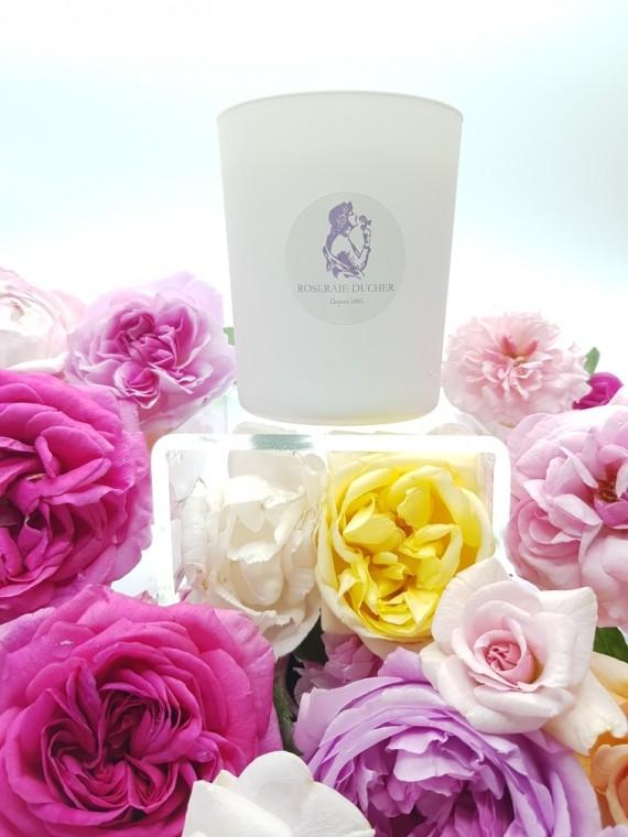 Grande Bougie en cire végétale parfumée à la rose
