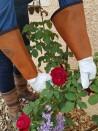 Gants de jardinage - modèle cuir